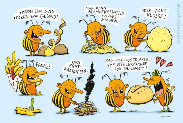 kartoffelbroetchen-3
